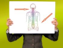 Trampolin Test - Zeichnerische Darstellung einer Wirbelsäule