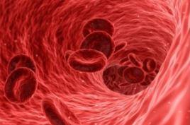 besser gesund leben - Blutbahn